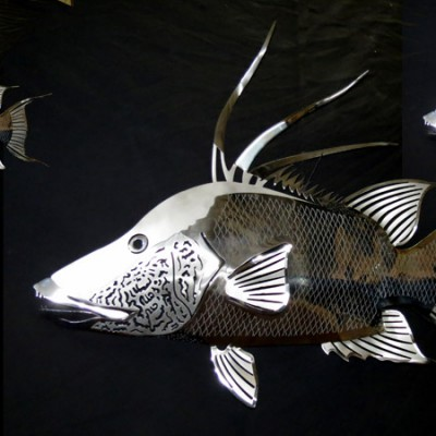 Stainless-Steel-Hogfish