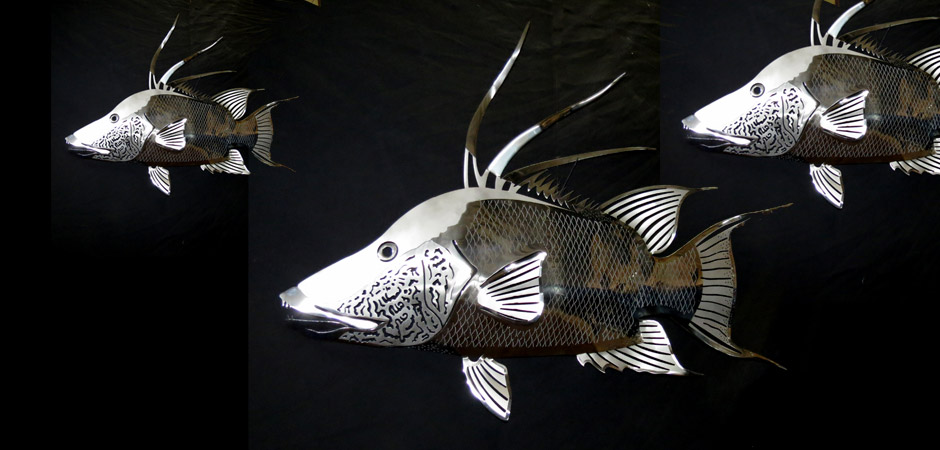 Stainless Steel Hogfish