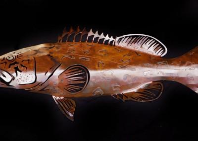 Grouper-Rusty-2--1