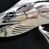 sailfish-stainless02