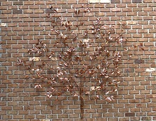 Copper Herb Garden Wall Sculpture