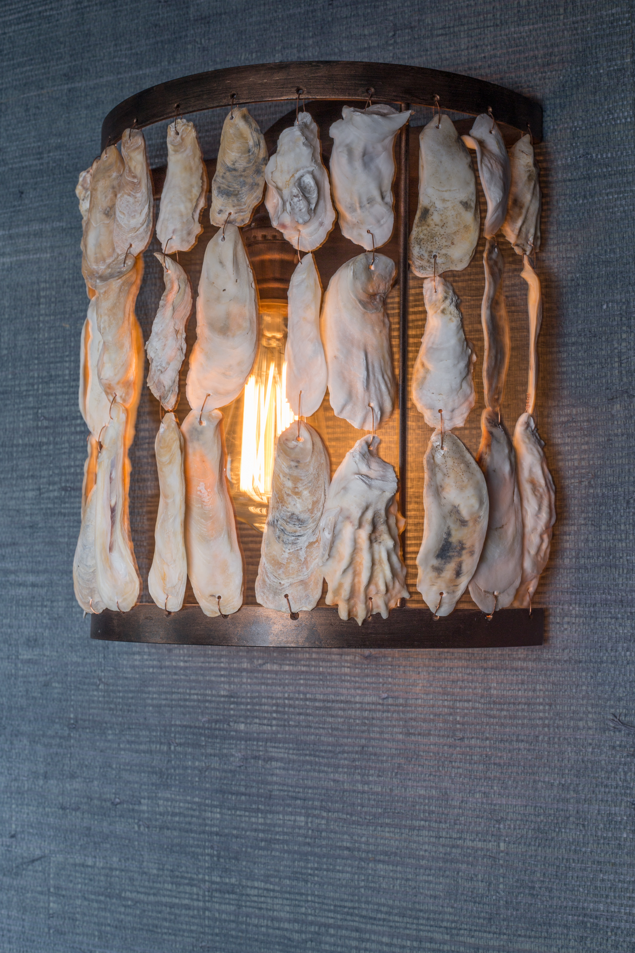 Oyster Shell Sconce